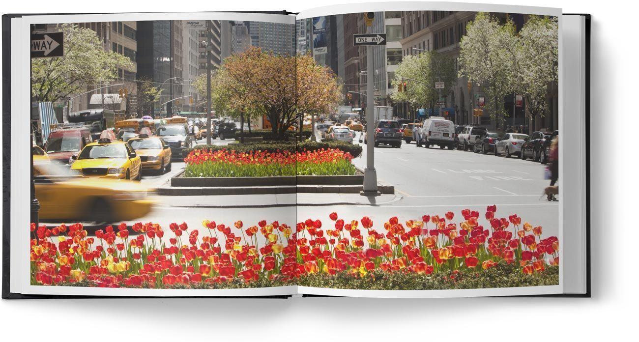 Diseño de libro de gran formato